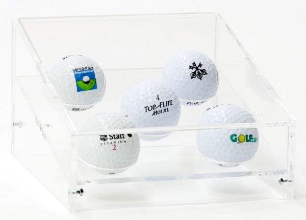 5er Golfball Präsentations Case Bild 1